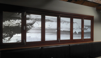 Printed frosted windows Torquay